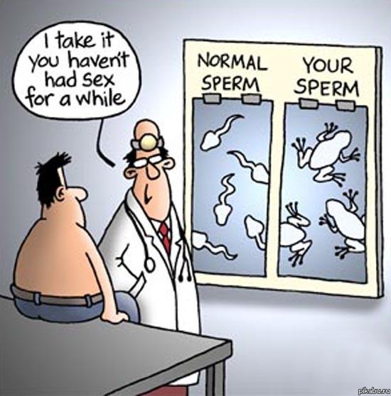 chto-takoe-spermotaksikoz