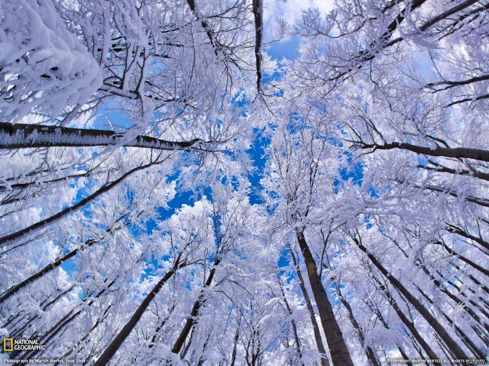Поверье на первый снег