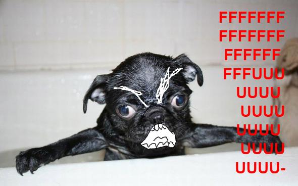 FFFFFUUUUU-пёс)))