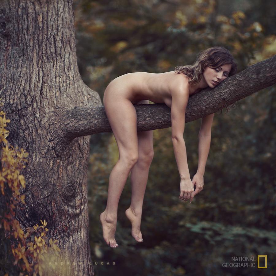 Фото голая девка у дерева 26 фотография