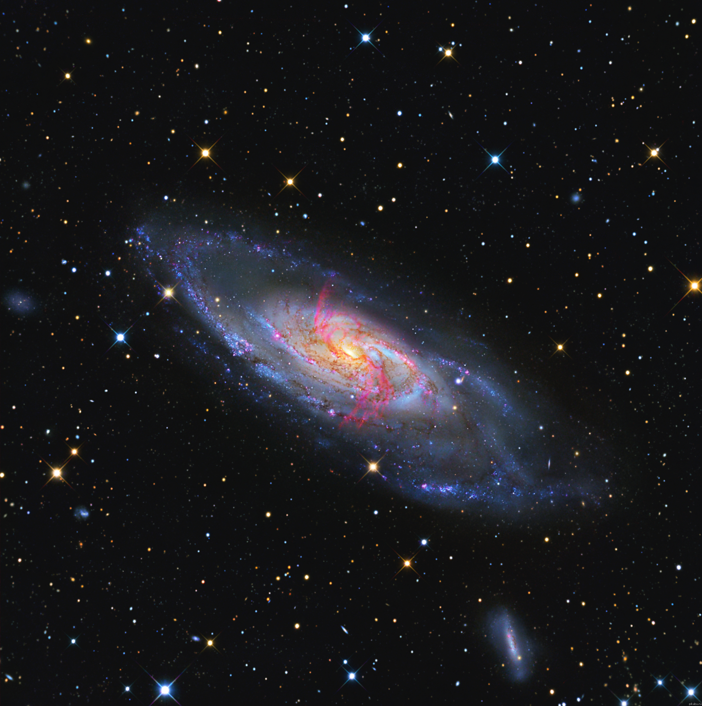 recent discoveries in astronomy - HD2449×2462
