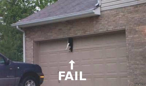 Cat door for garage door