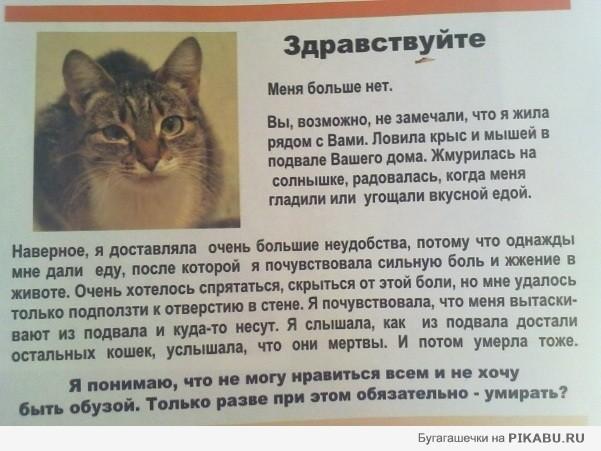 http://apikabu.ru/img_n/2011-05_5/ff0138.jpg