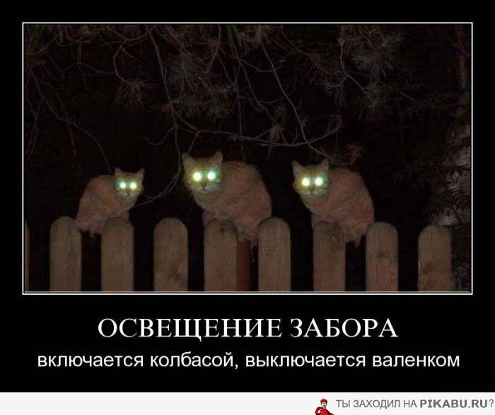 юмор в картинках - Страница 2 4fb310