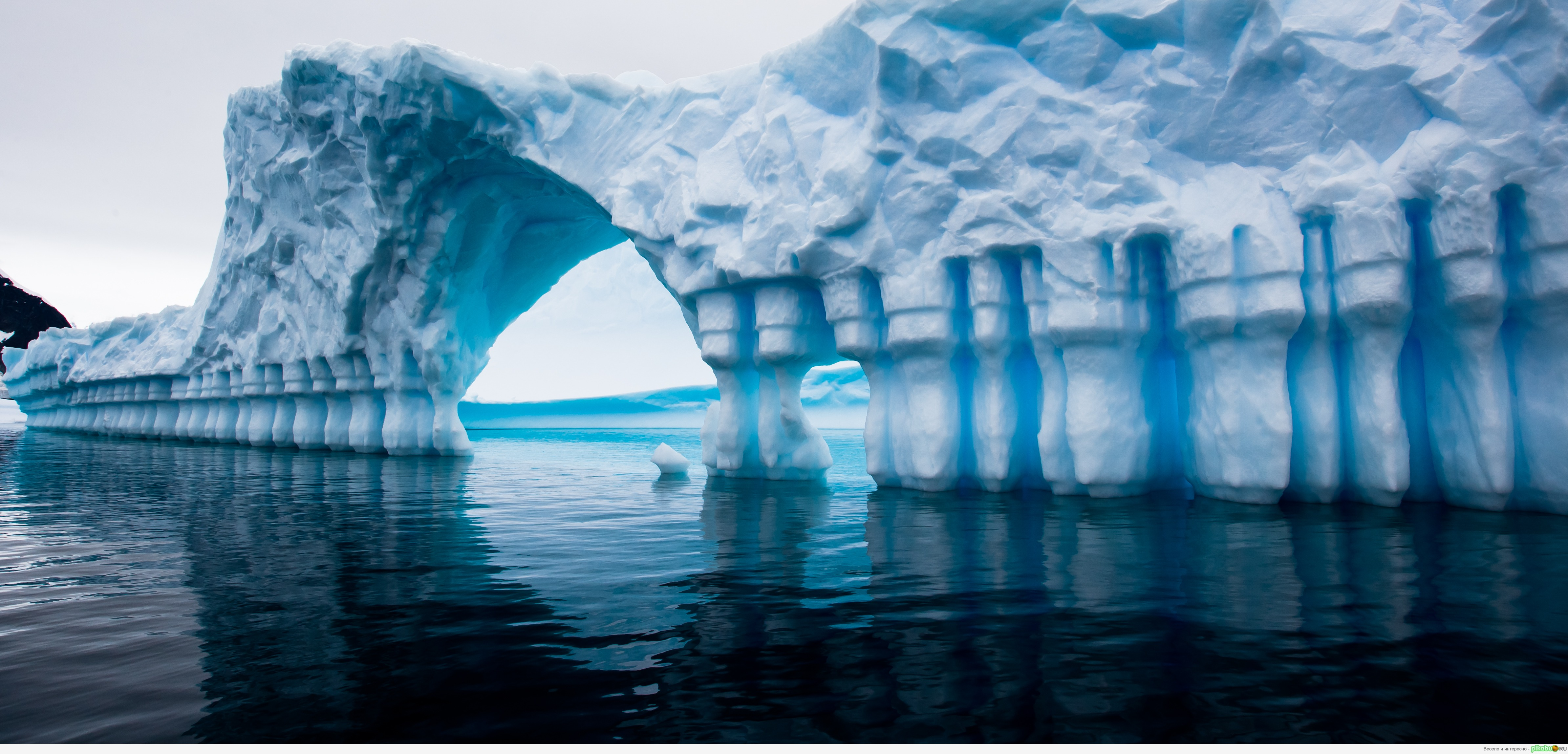 global warming in antartica The global warming effect on antarctica can have devastating results for the entire world when ice melts and the sea rises, this leads to more moisture in the air.