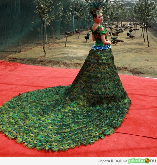 Самые необычные свадебные платья в мире фото джинсовая одежда больших размеров для женщин