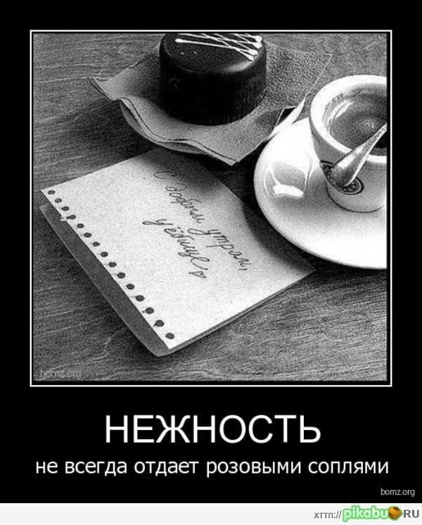 Лучше кофе только секс по утрам демотиваторы 19
