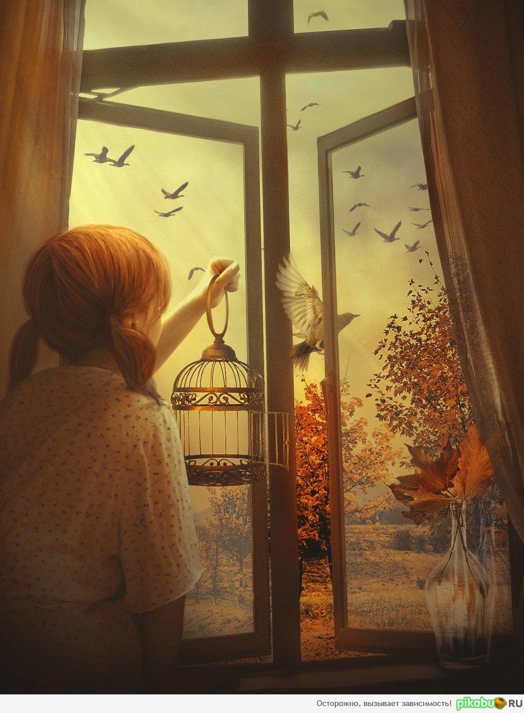 Фото девушки сидящей в окне спиной 14 фотография