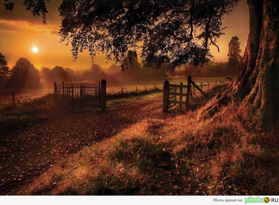 осенний закат фото