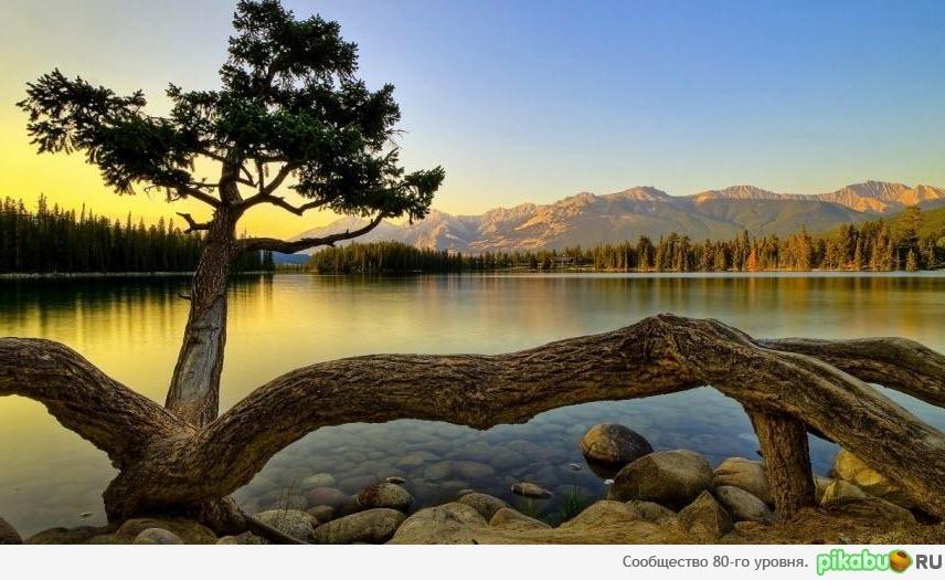 WallpapersWide.com | Nature HD Desktop Wallpapers for ...