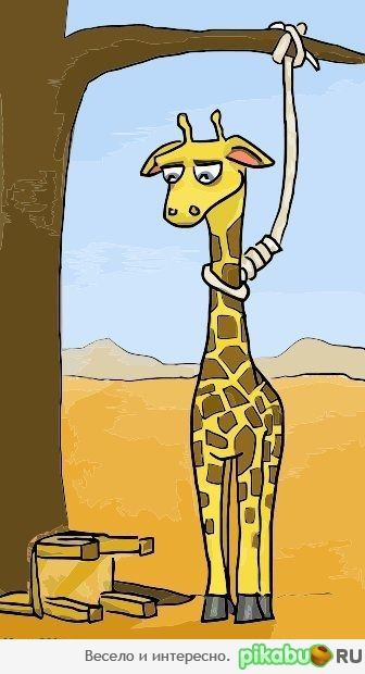 Depressed giraffe