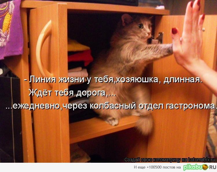 http://apikabu.ru/img_n/2011-10_3/mc4.jpg