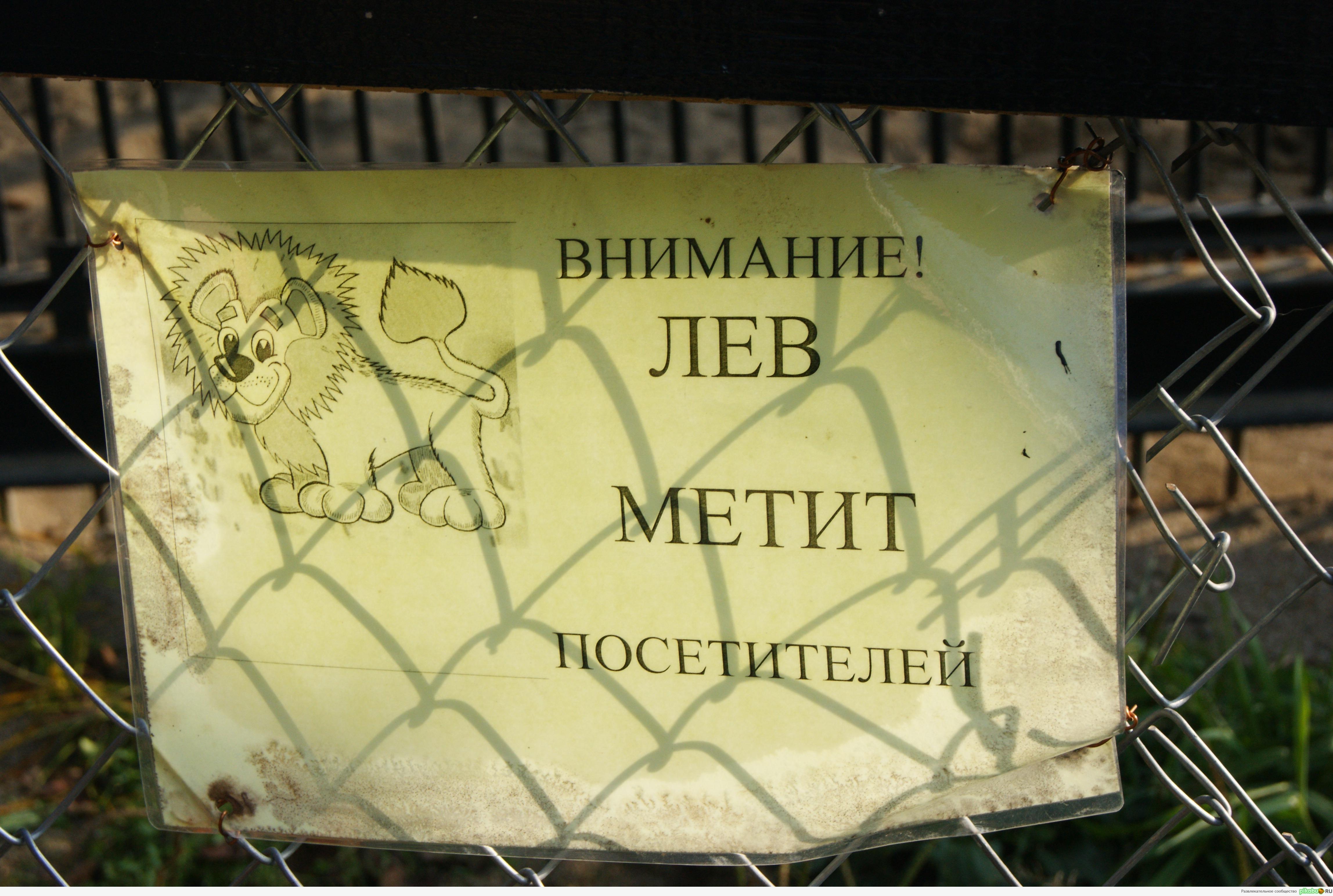 Сахком новости южно сахалинск проститутки индивидуалки65 6 фотография