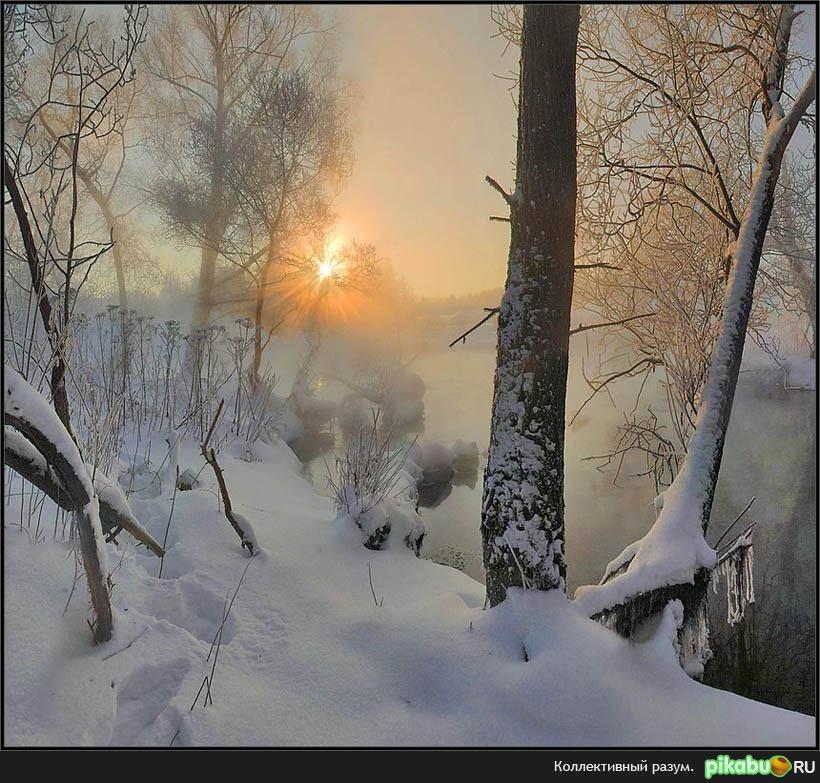 Мы на праздник зимы лесом пробирались