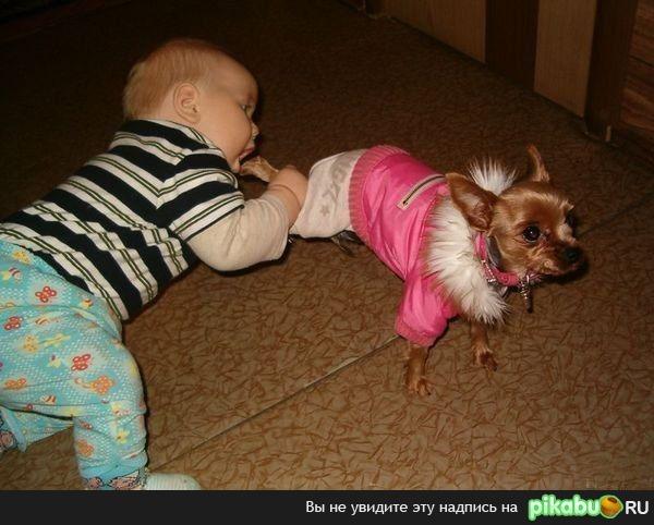 фото детей и животных смешное