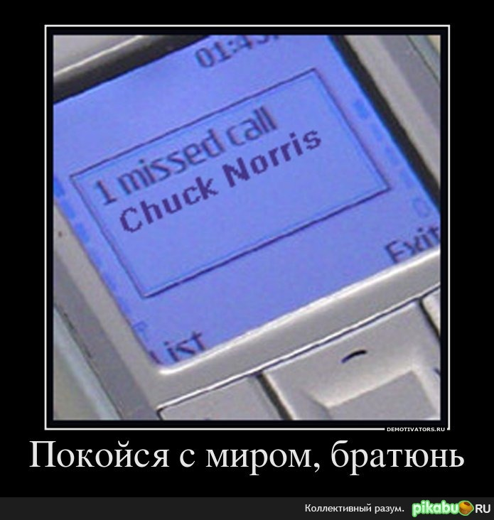 Покойся с миром... навеяло постом http://pikabu.ru/story/zvonok_ot_chaka__374140
