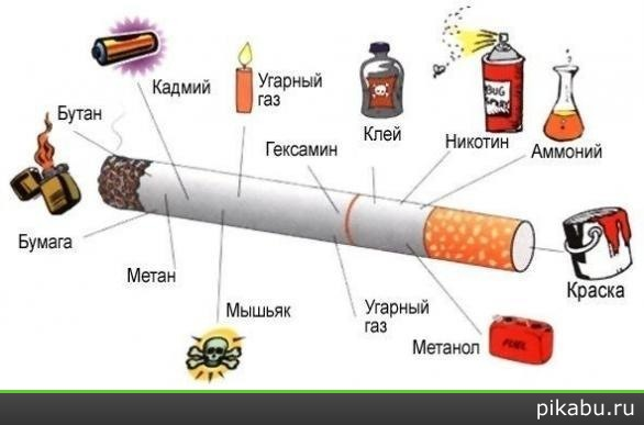 http://apikabu.ru/img_n/2012-01_1/7n7.jpg