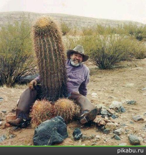Huge Cactus Penis.