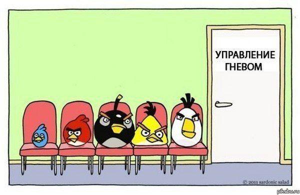еще креатив Angry Birds