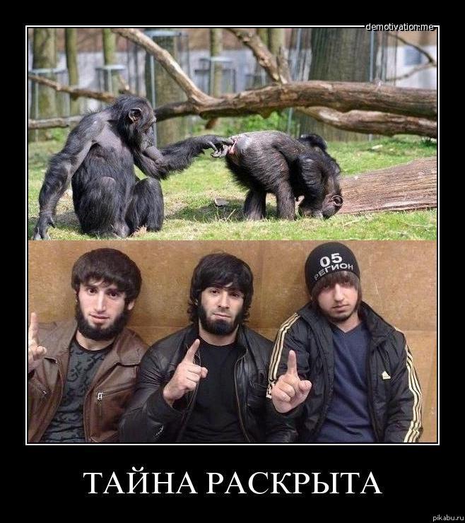 Русских шлюх ебут толпой во все щели