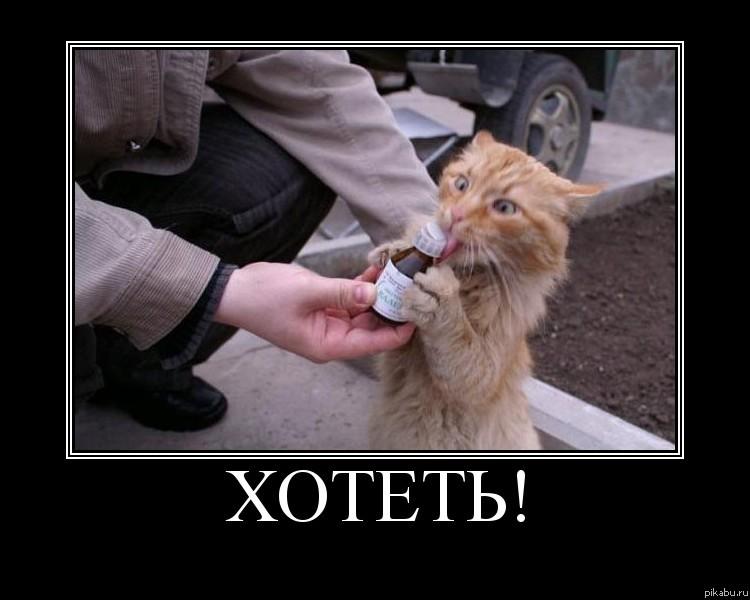 Смотреть орно руское 25 фотография