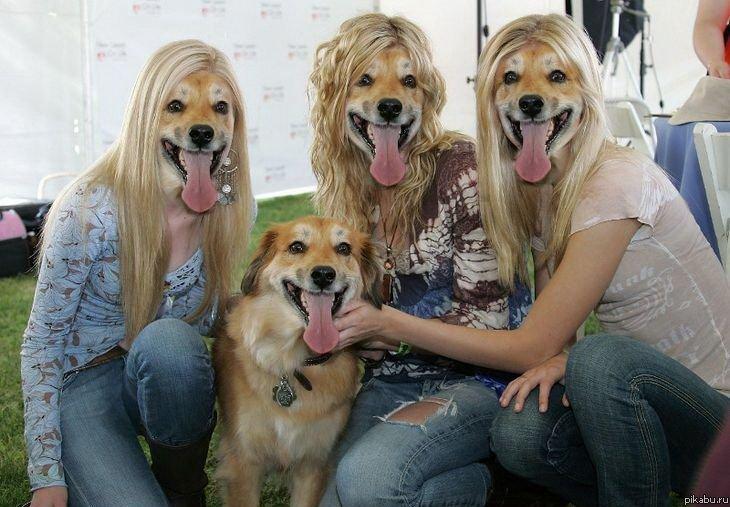 Фото девушек с щенками на аву