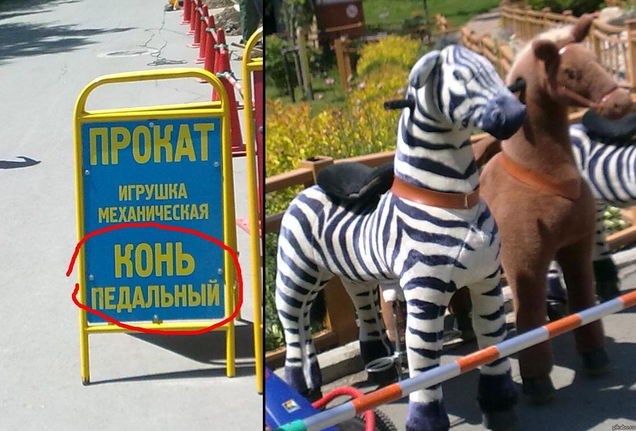 Сахком новости южно сахалинск проститутки индивидуалки65 22 фотография