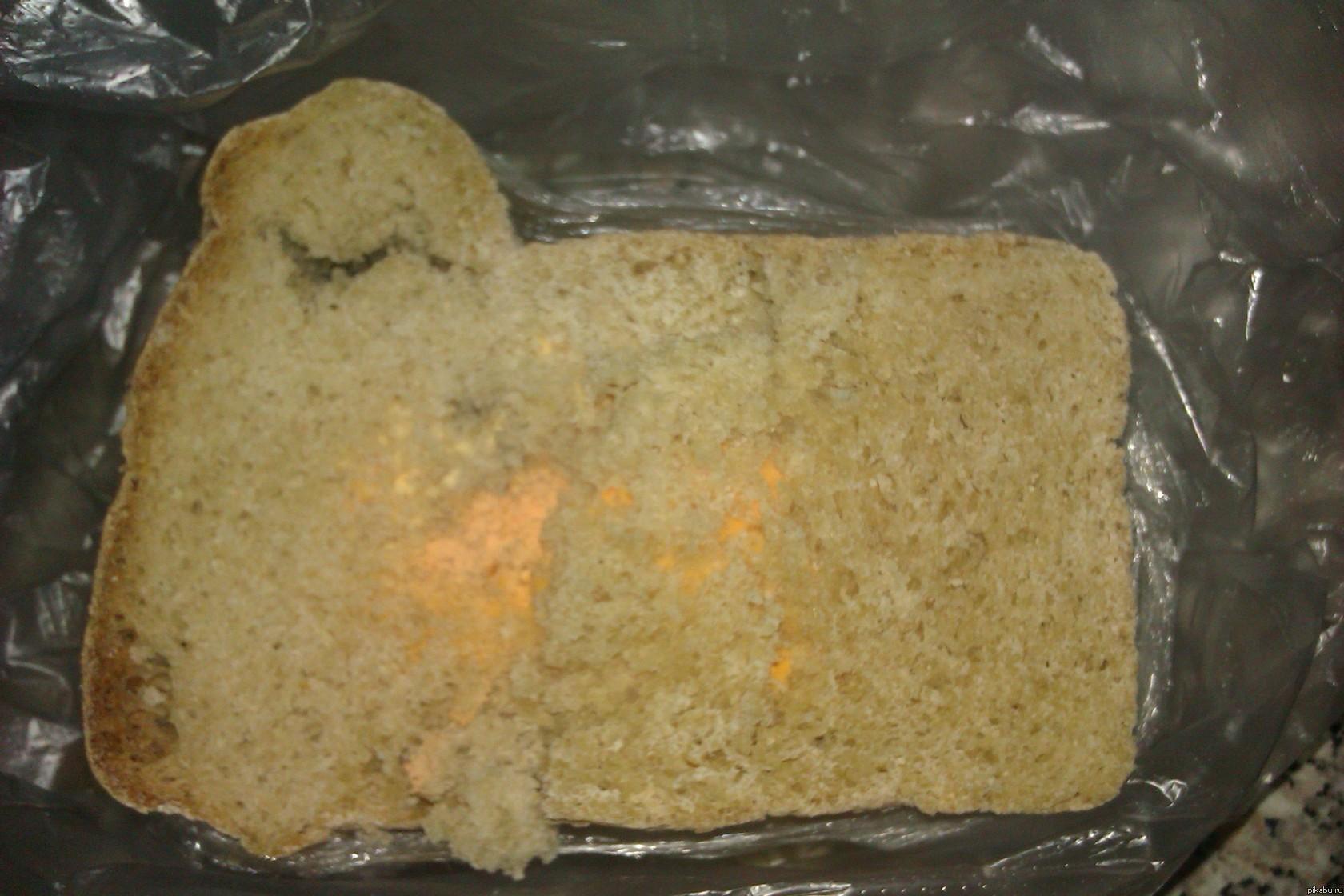 оранжевая плесень на хлебе деревянные идеально вписываются