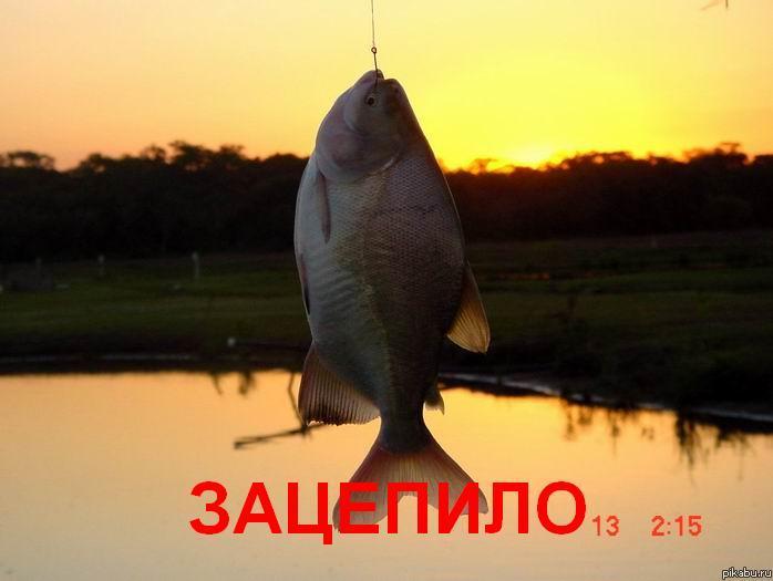 http://apikabu.ru/img_n/2012-07_4/ty8.jpg