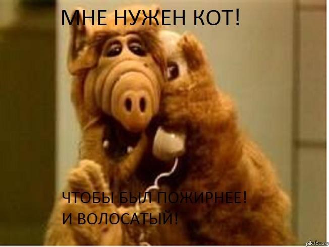 аватарки альф:
