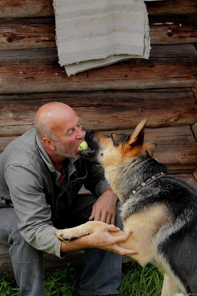 Любовь к домашним животным Мне это фото показалось несколько странным.