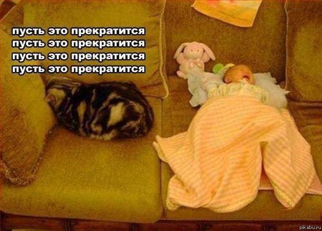Бедный котэ)))