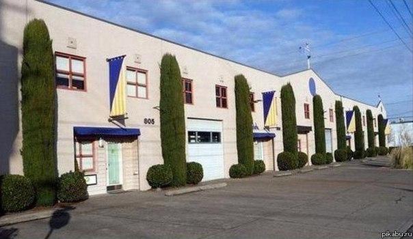 Viagra Head Office