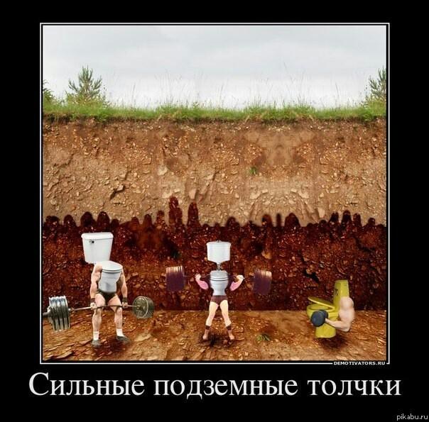 Российское ебля на публики в туолетах 21 фотография