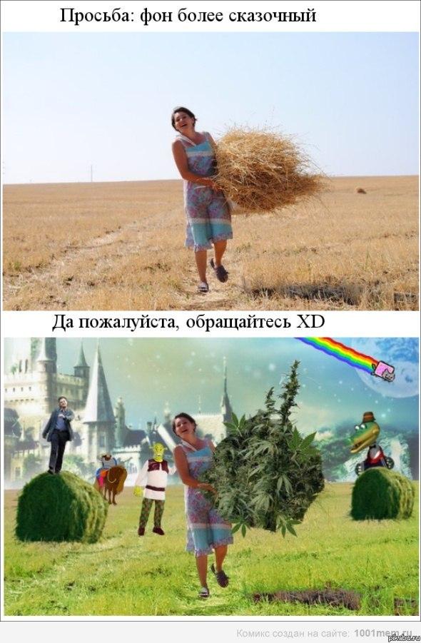 Фотожаба)  Картинки и фото