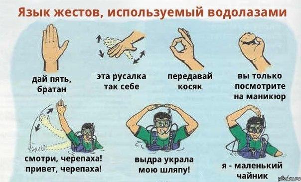 что можно сказать по жестам курс евро Новосибирске