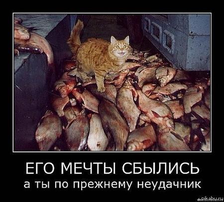 Анекдот целую рыбу