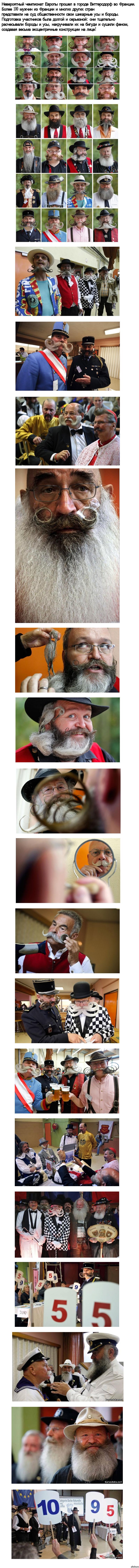 Чемпионат бород и усов 2012. Длиннопост