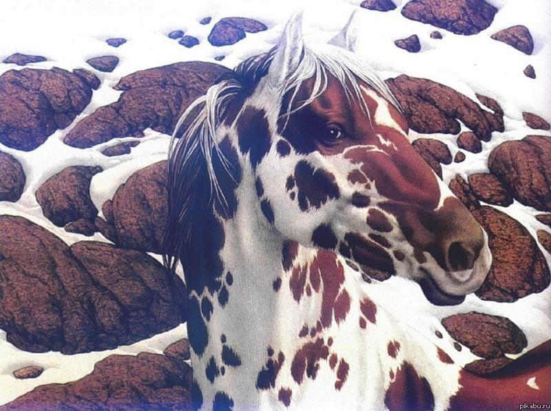 И уносят меня, и уносят меня в цветную звенящую хрень три белых коня, два красных слона, пингвин, бегемот и олень.