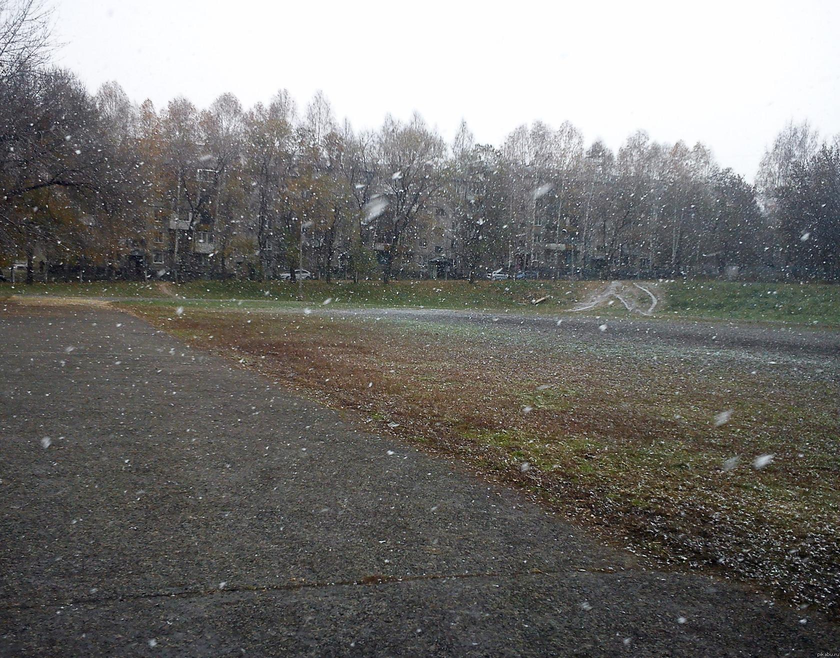 Первый снег в Кемерово Я знаю, что у многих снег уже выпал, но не смогла не поделиться такой красотой *О*