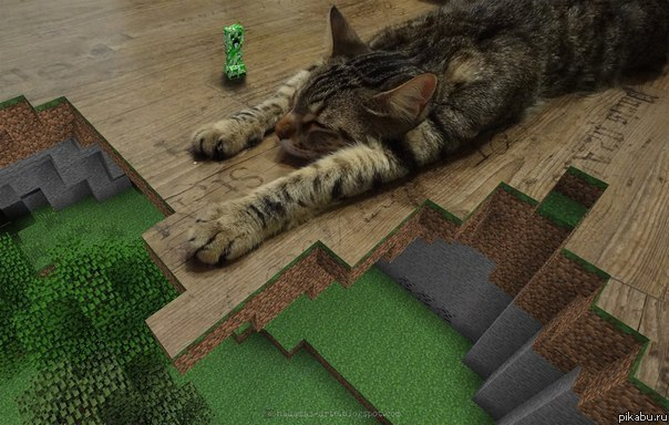 best way to stop cats from scratching furniture