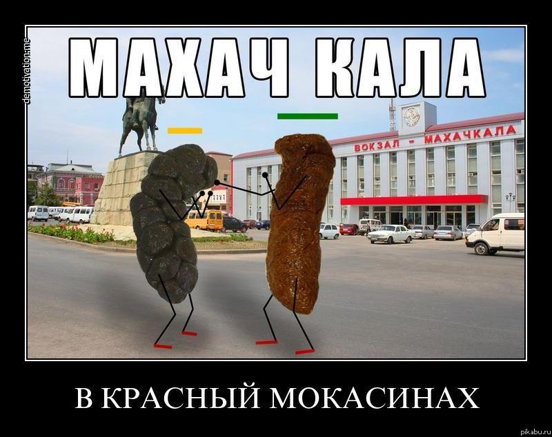 Вся суть кауказа. овцеёбам сюда!!!!!!!!!!!!