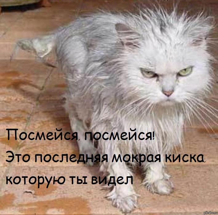 Русские лизби 18 ч мокрыми кисками 15 фотография