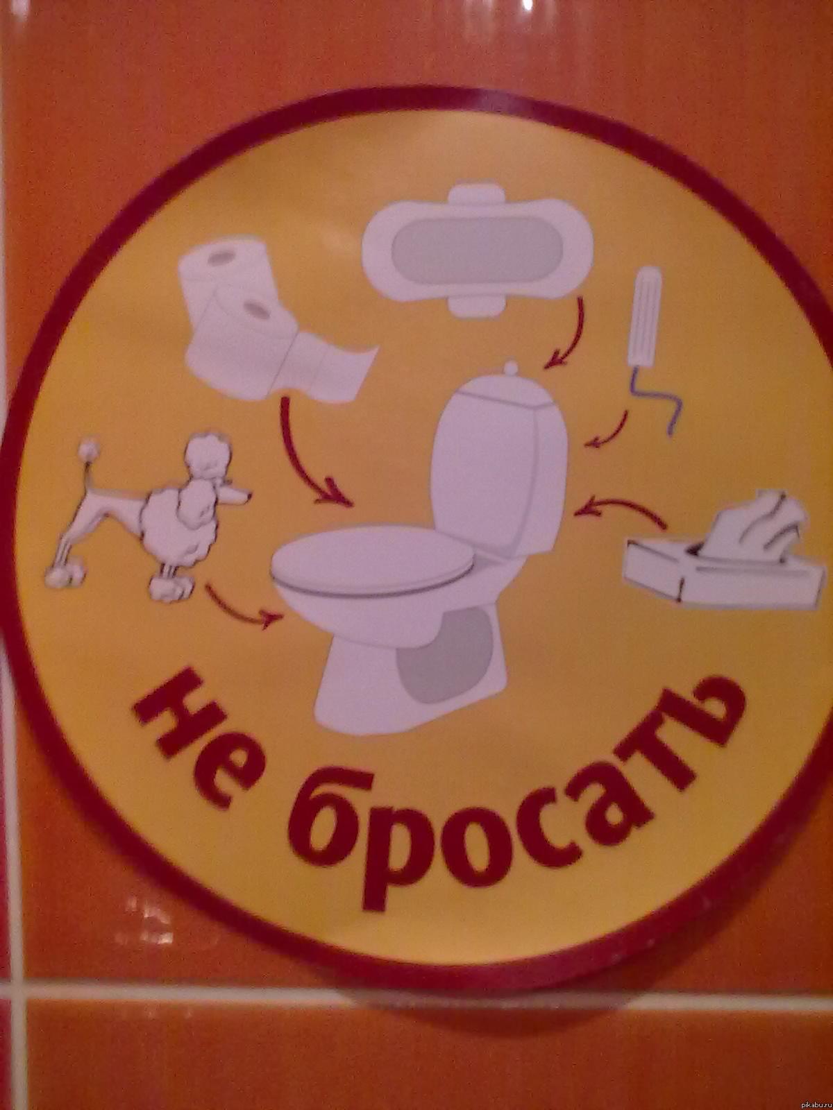 Посмотреть как девушка на какала в туалет 26 фотография
