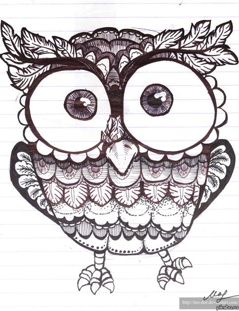 Позитивная сова сова нарисованная на
