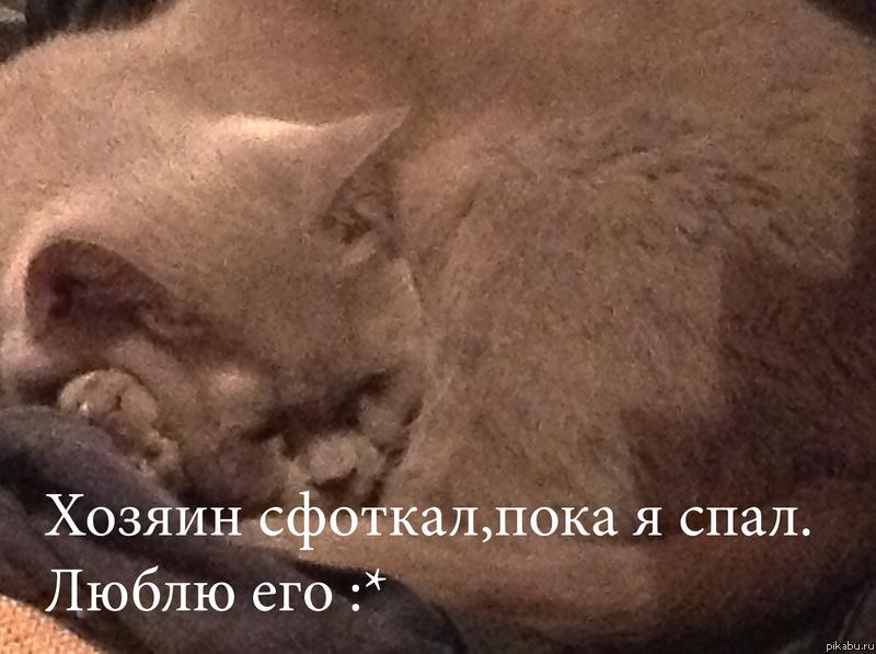 Смотреть сфоткал спящую маму 12 фотография