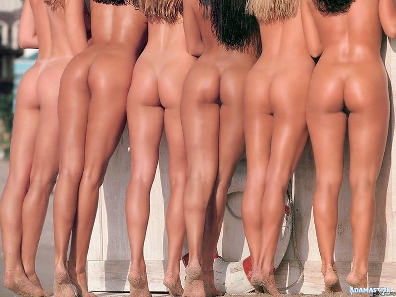 голые девушки красивые попки фото