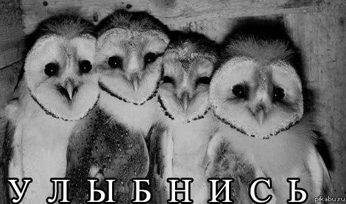 картинки улыбнись: