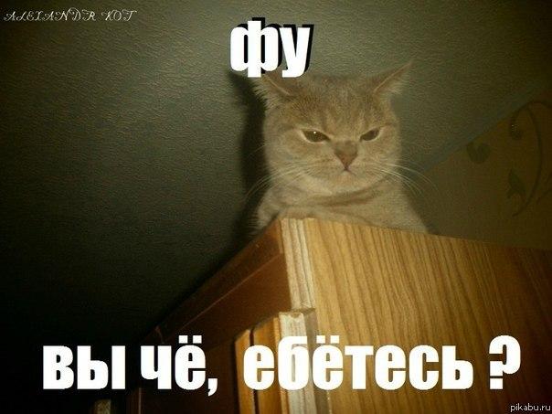 http://apikabu.ru/img_n/2012-07_2/ndk.jpg
