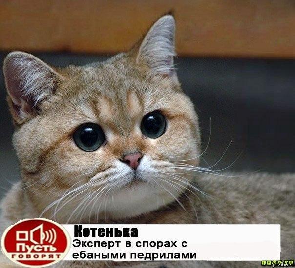 http://apikabu.ru/img_n/2012-10_6/w8o.jpg